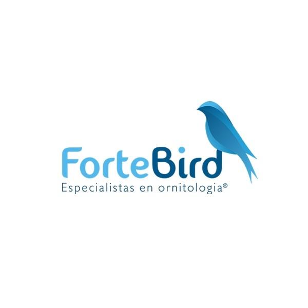 Forte Bird
